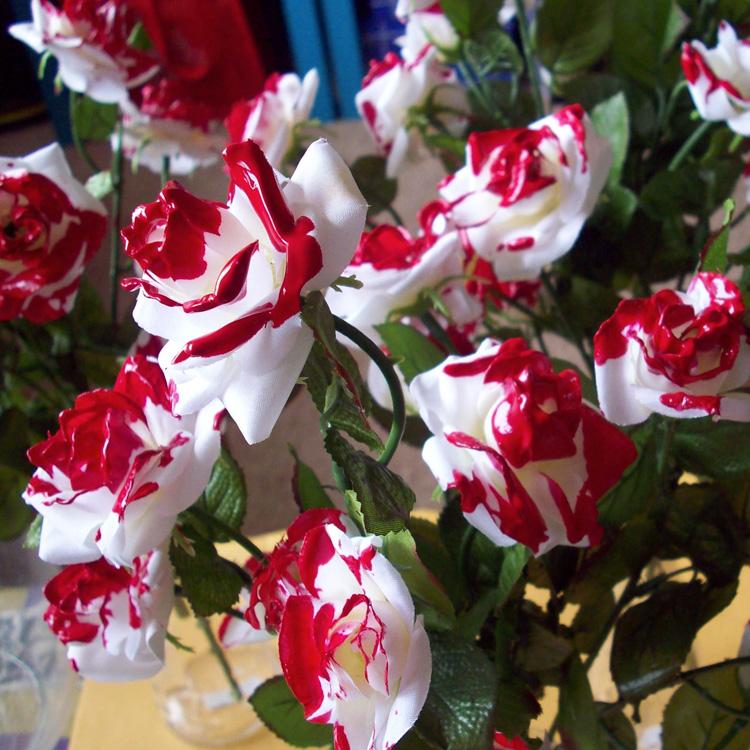 Rosas vermelhas Alice no País das Maravilhas Rica Festa